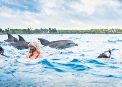 Zanzibar Magic - Safari Blue